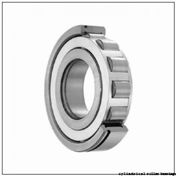 90 mm x 190 mm x 43 mm  NACHI NF 318 cylindrical roller bearings
