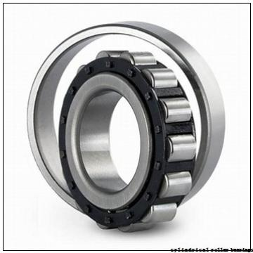 25 mm x 52 mm x 18 mm  ISO NUP2205 cylindrical roller bearings