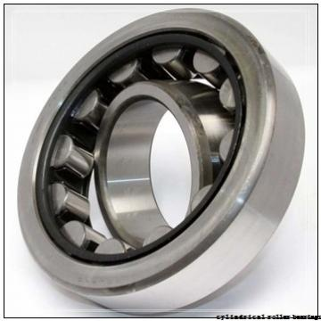 75 mm x 130 mm x 31 mm  NACHI NUP 2215 E cylindrical roller bearings