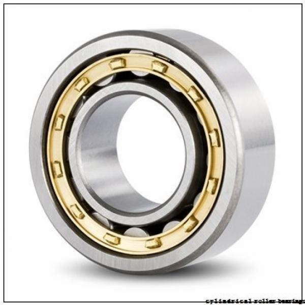 20 mm x 52 mm x 21 mm  NKE NJ2304-E-TVP3+HJ2304-E cylindrical roller bearings #1 image